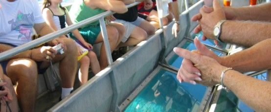 A short tour on a glass bottomed boat (3 hours) to enjoy the sub-marine life.