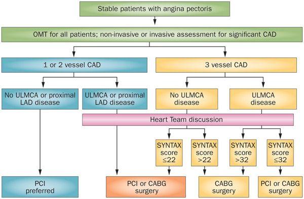 coronary artery disease treatment pdf