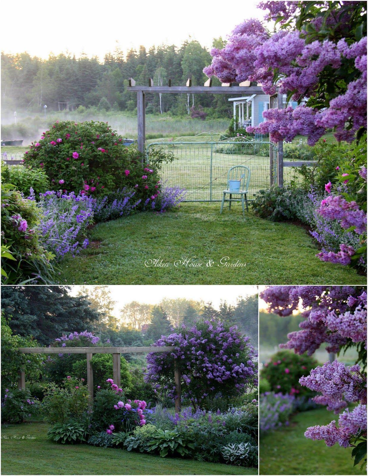 House garden landscape  Aiken House u Gardens  Сад   Pinterest  Gardens House and