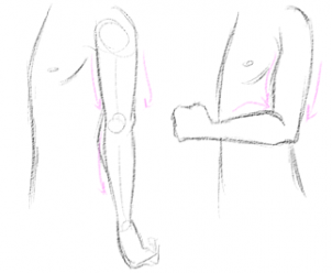 How To Draw Anime Arms Google Search Anime Drawings Drawings Anime Arms