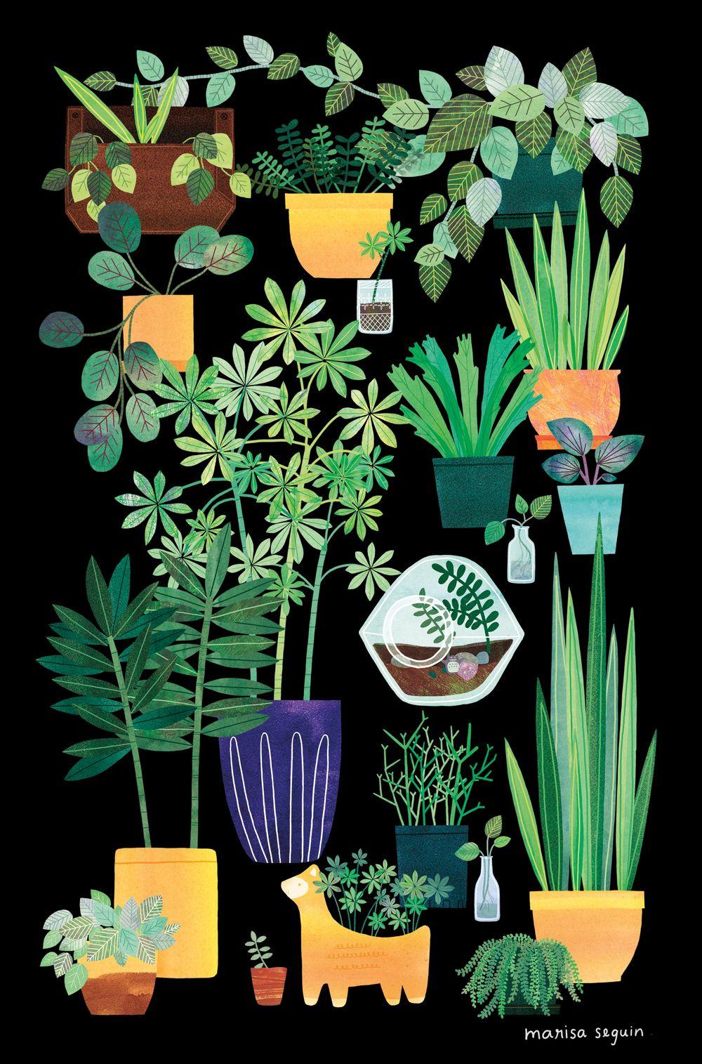Blog - Marisa Seguin | | Art | | Pinterest | Fondos, Ilustraciones y ...