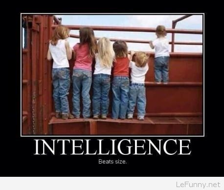 Funny intelligent kid Funny Pictures Funny Quotes