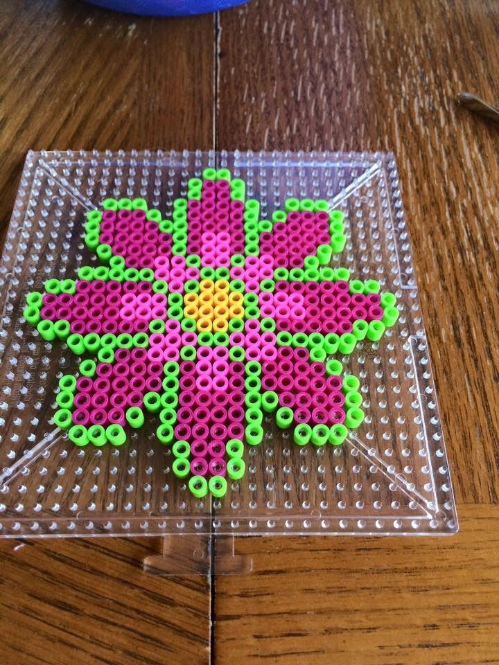 Perler Bead Flower Perler Beads Pinterest Perler Beads Beads Interesting Perler Bead Flower Patterns