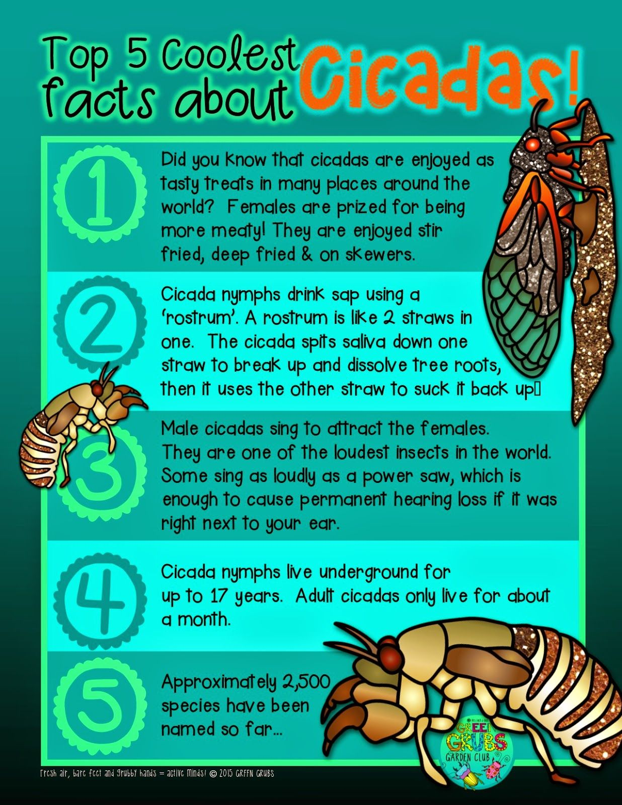 Free Printable Top 5 Coolest Facts About Cicadas Green