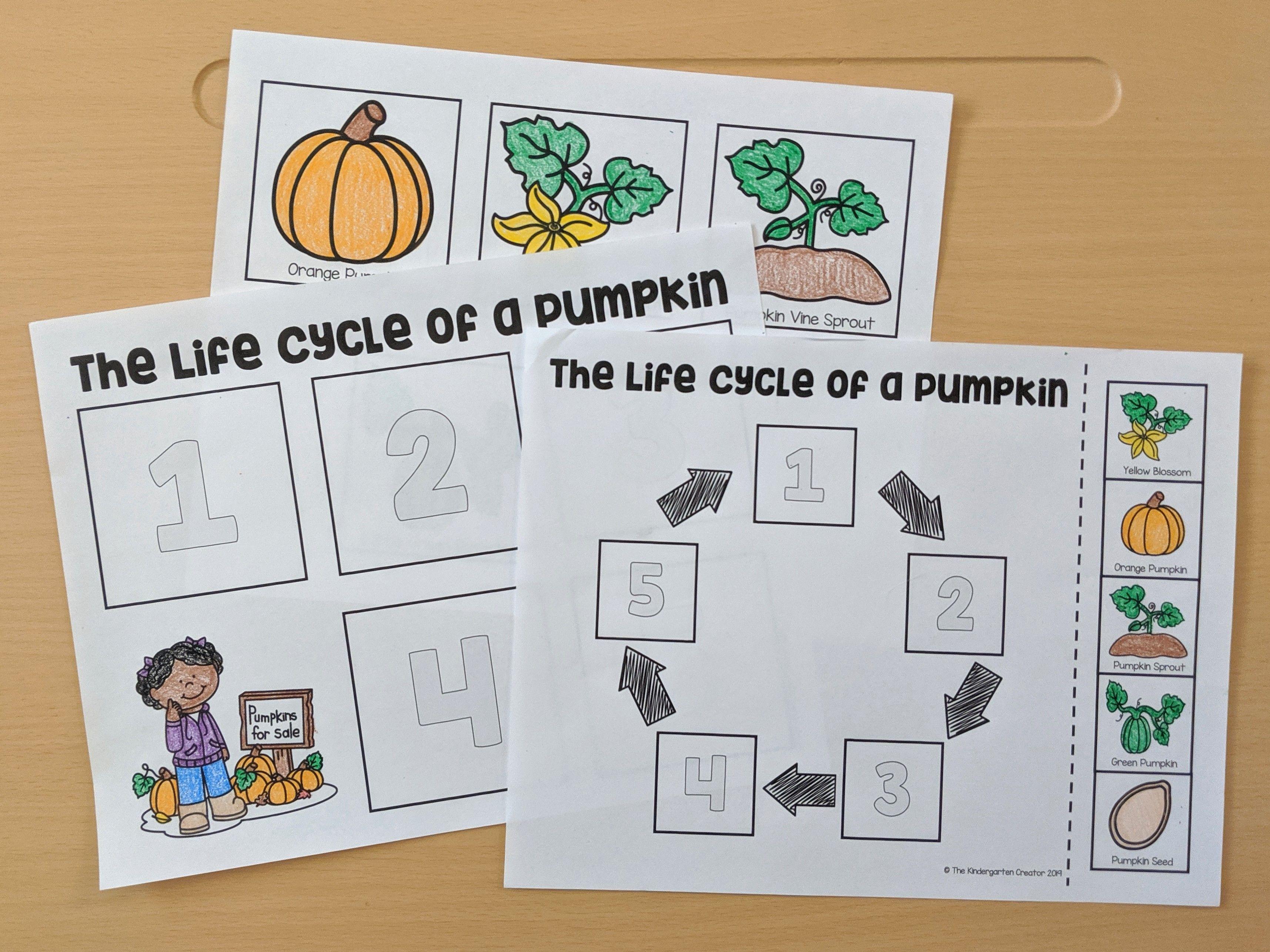 Pumpkin Life Cycle Printables Life Cycles Pumpkin Life Cycle Kindergarten Activities [ 2571 x 3430 Pixel ]