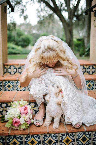 Real Weddings: Kelly and Joshua's Florida Estate Wedding.   (Puppy!!!!!)