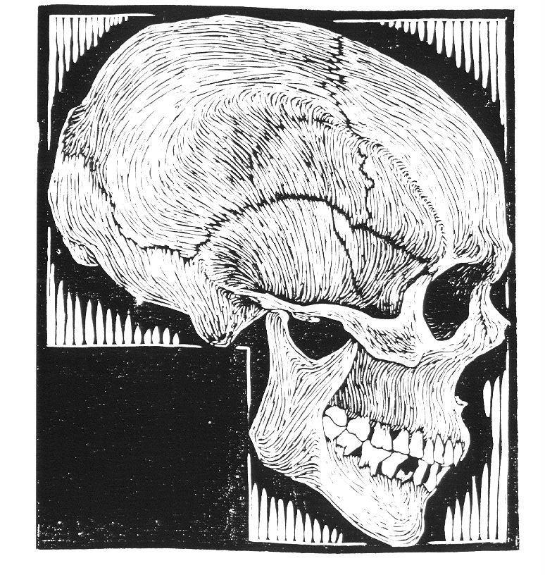 M. C. Escher — Skull
