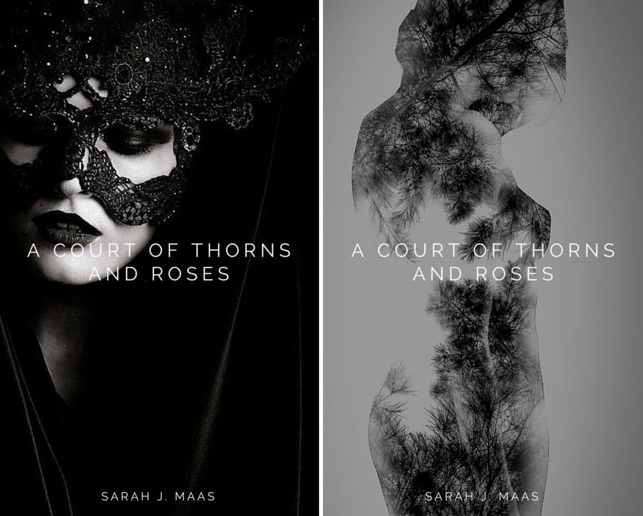 """alternative book covers """"A Court of Thorns and... - To whatever end"""