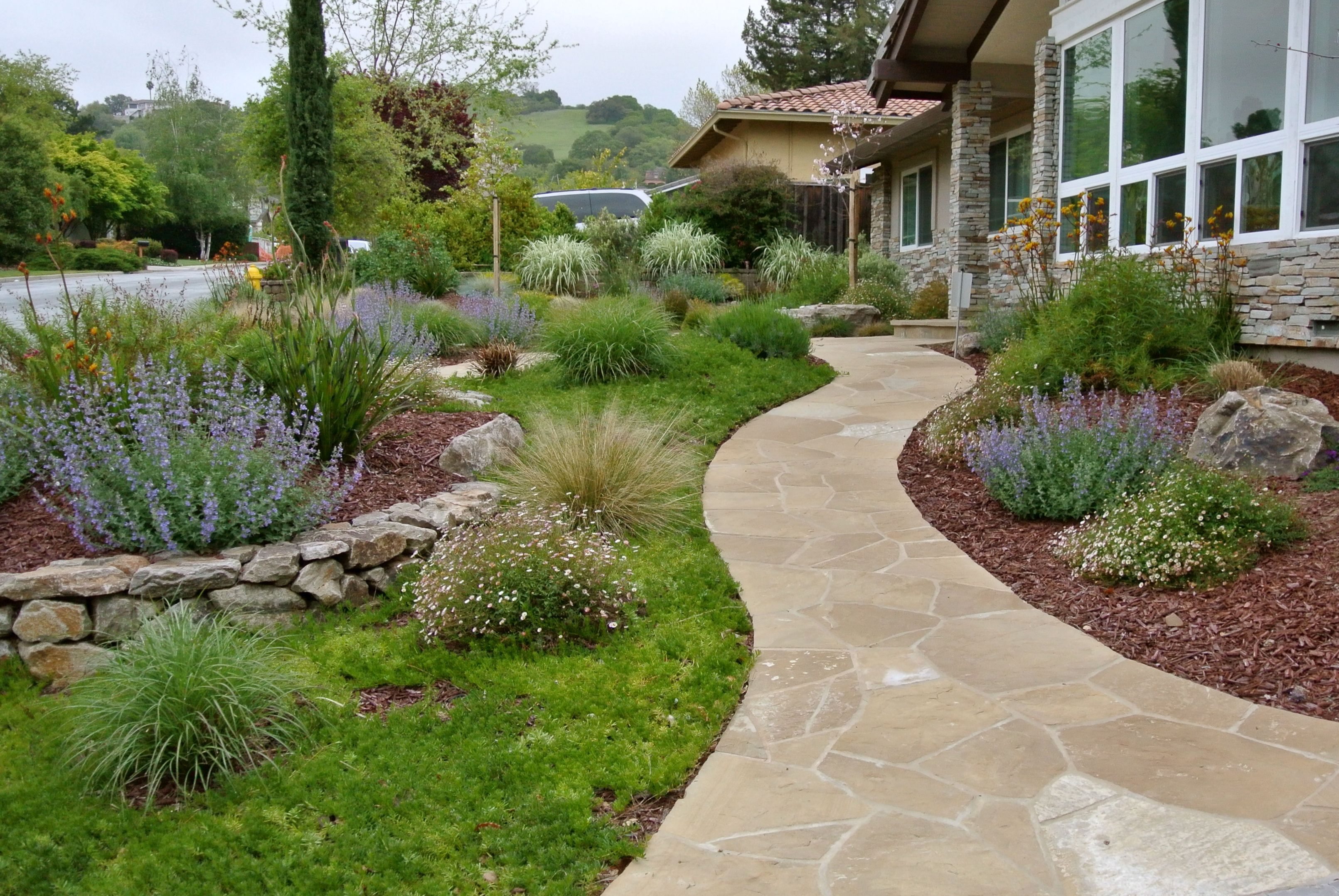 Easy Care Landscape Design By Confidence Landscaping, Inc