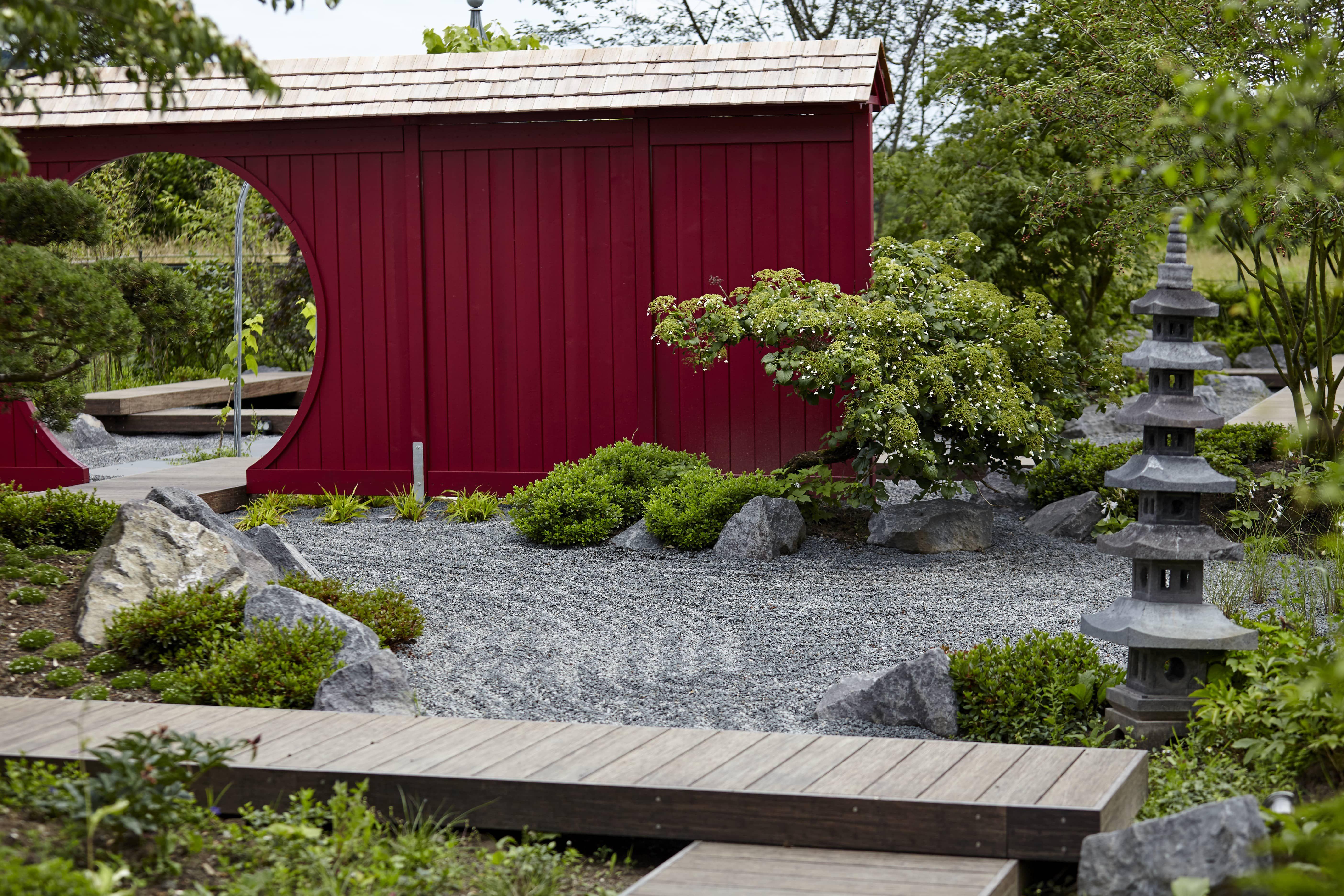 Leben Im Japanischen Garten Von Rheingrun Mit Bildern Japanische Gartenpflanzen Garten Japanischer Garten