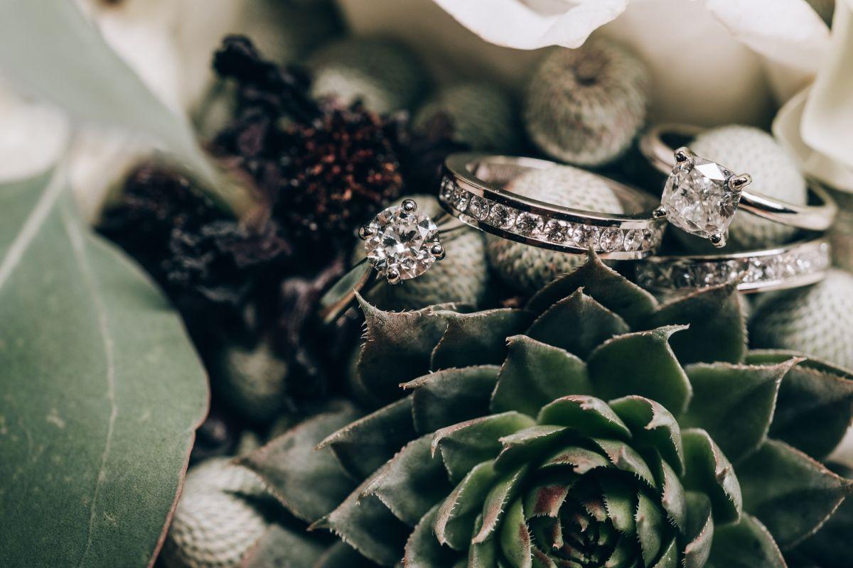 Rings Succulent Lgbtq Wedding Westwood Garwood Autumn Wedding