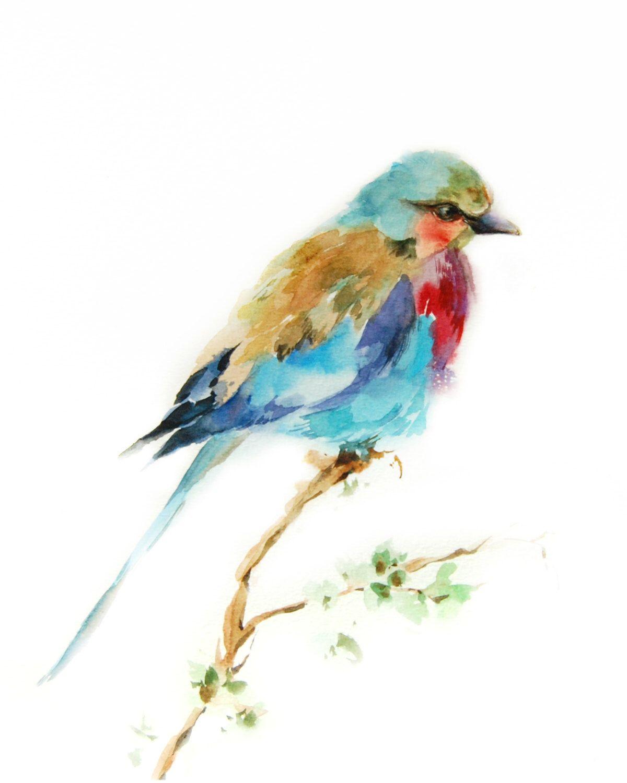 Lilac Bird Art Print Bird Watercolor Print Colorful Bird Etsy Bird Watercolor Print Watercolor Bird Bird Watercolor Paintings
