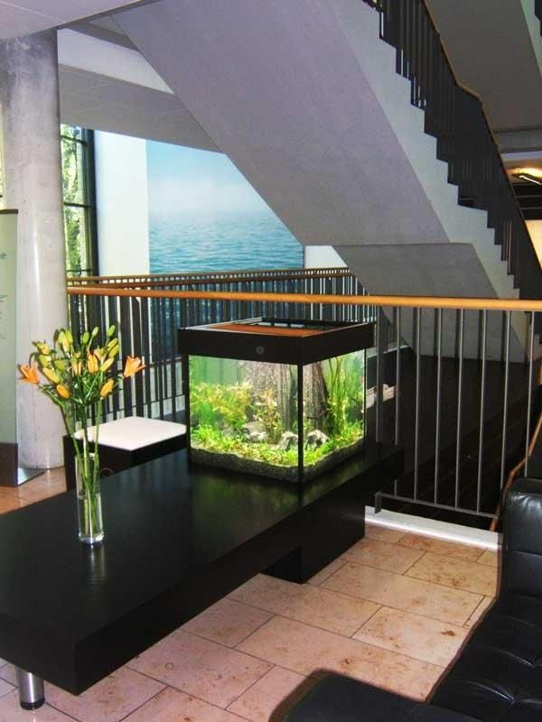 Awesome Fish Tank Living Room Ideas Above Black Wooden Table Plus
