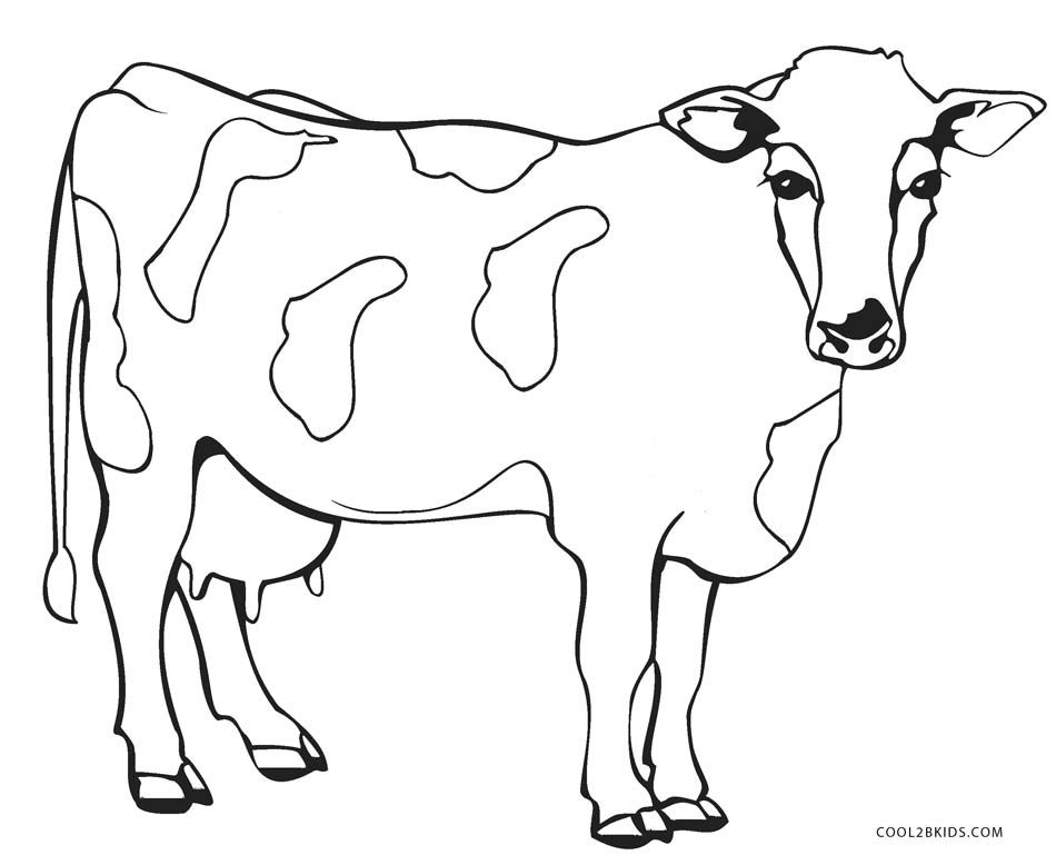 Free Printable Cow Coloring Pages For Kids In 2020 Cow Coloring Pages Cow Colour Dog Coloring Page