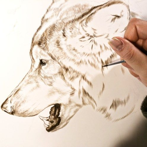 Sepia watercolor on board, work in progress, ©Rebecca Latham