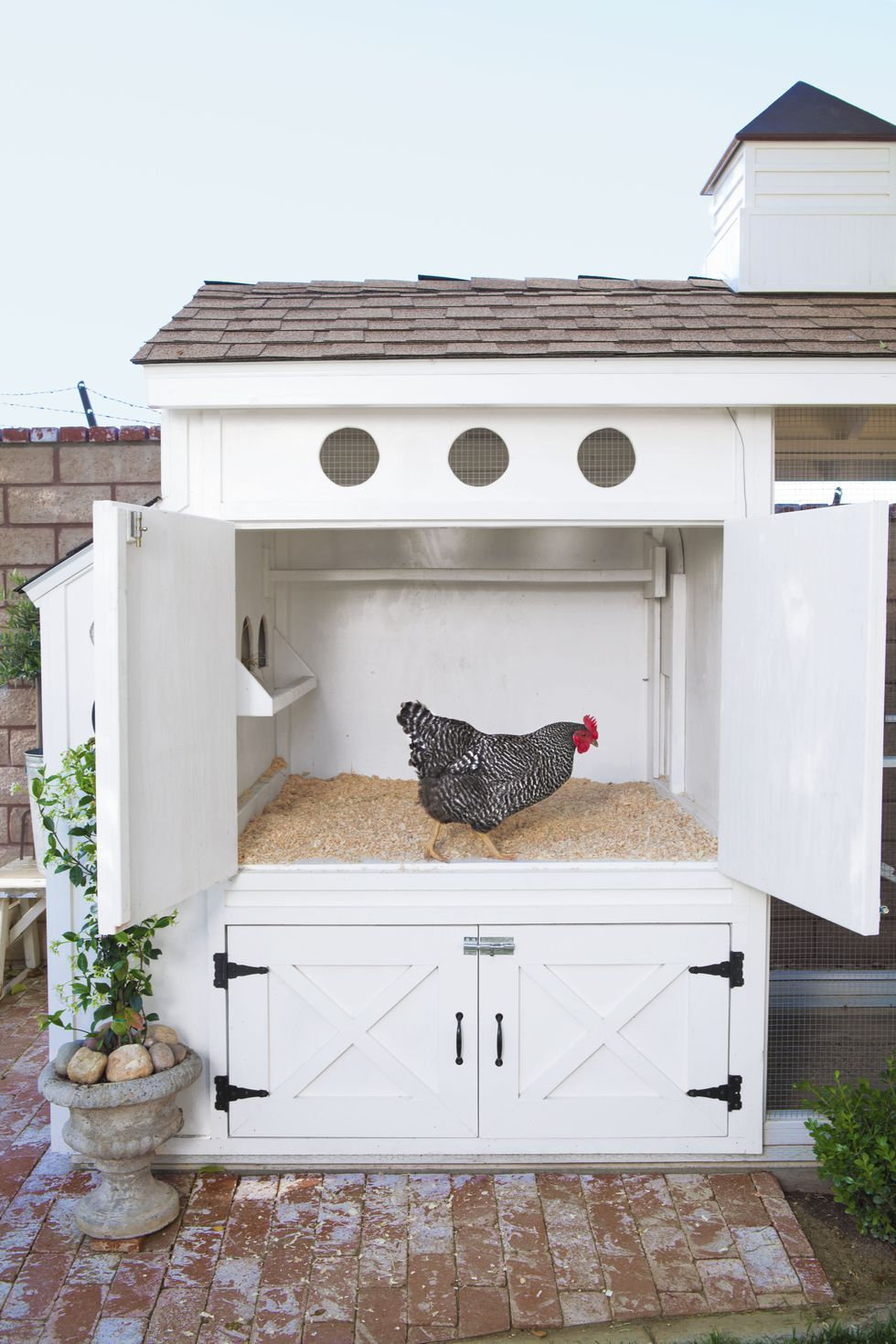 22 Low Budget Diy Backyard Chicken Coop Plans: Build The Ultimate Chicken Coop With These Easy Plans