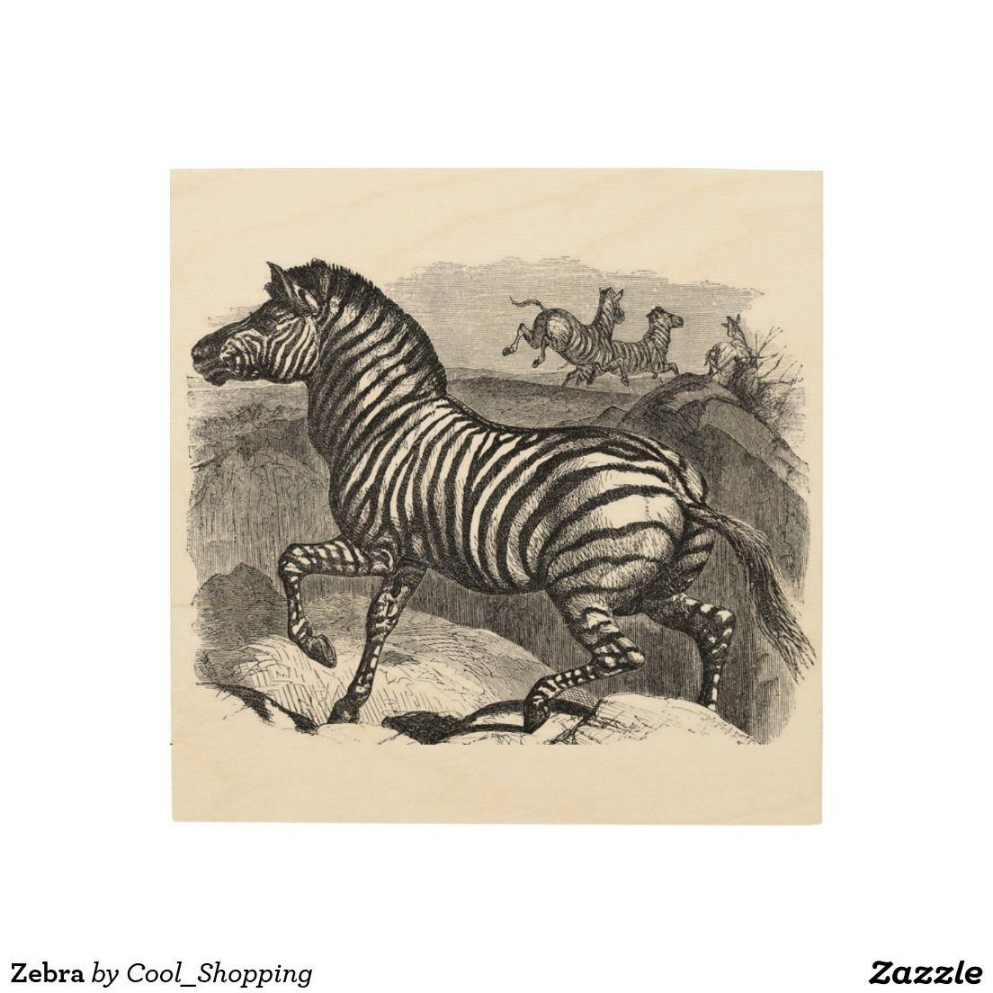 Zebra wood wall decor black u white designs pinterest wood