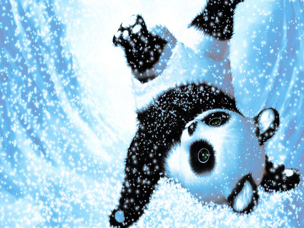 Cute Snow Panda Wallpaper Panda wallpapers, Panda
