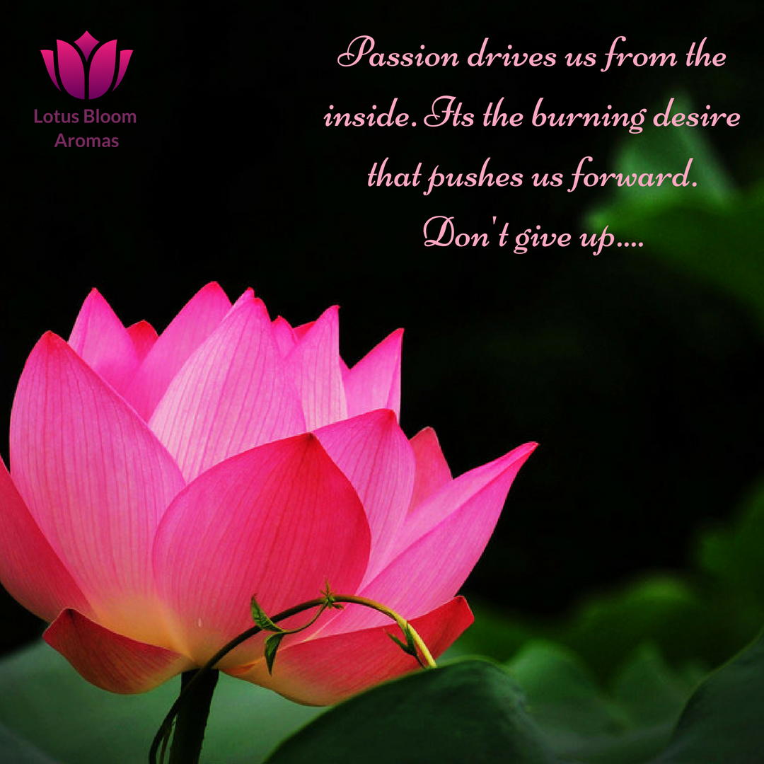 You are almost there ️ Happy Sunday lotusquotes passion
