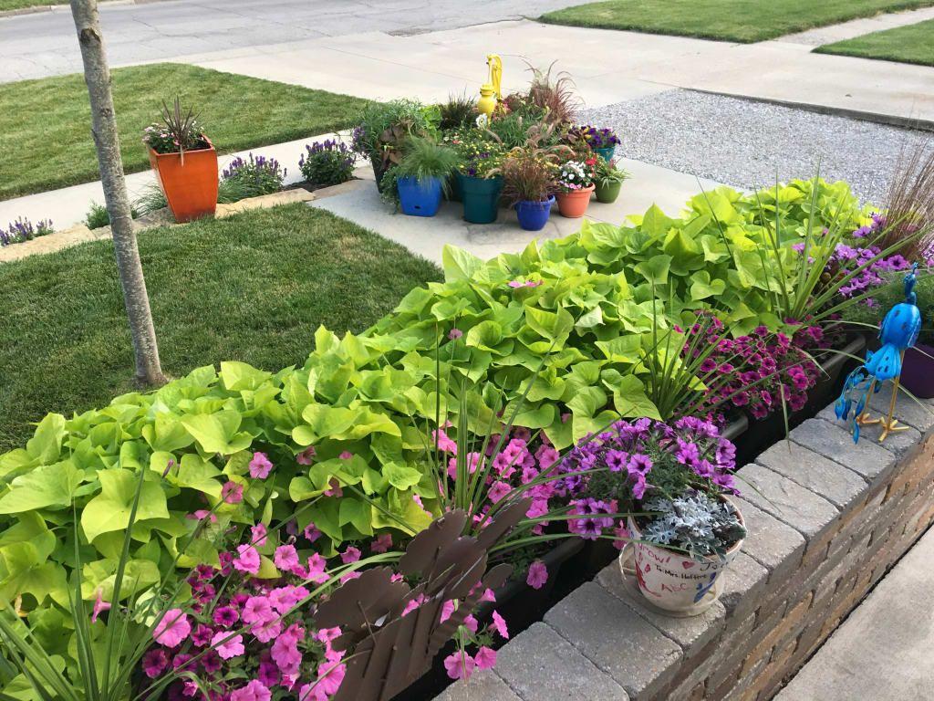 Herb Planters - Self-Watering Patio Planter | Gardeners.com