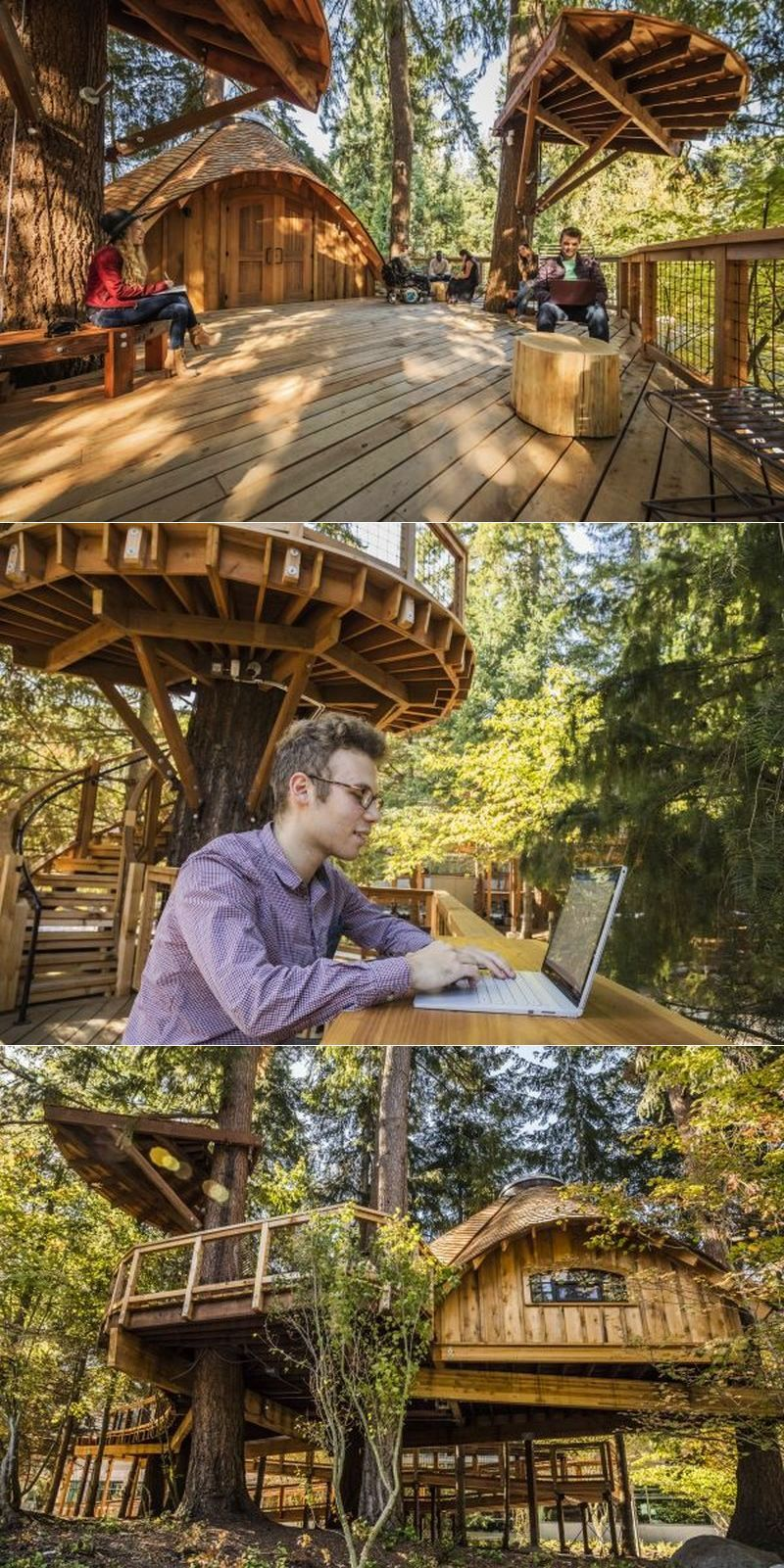 Microsoft builds technology-enabled treehouse workspaces for its employees  #treehouse #treehousehotel #treehouseresort #getaway