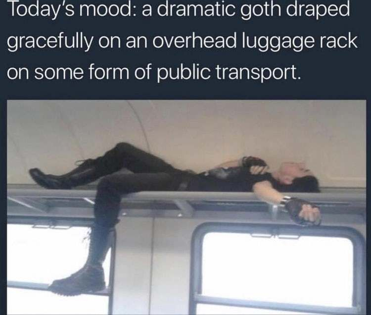 28 Best Memes That Have A Dark Sense Of Humor Check Out Www Funhappyquotes Com Dark Sense Of Humor Dark Humour Memes Good Night Meme