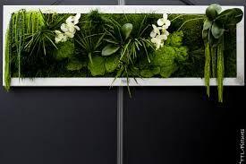 """Résultat de recherche d'images pour """"murs végétalisés intérieur"""""""