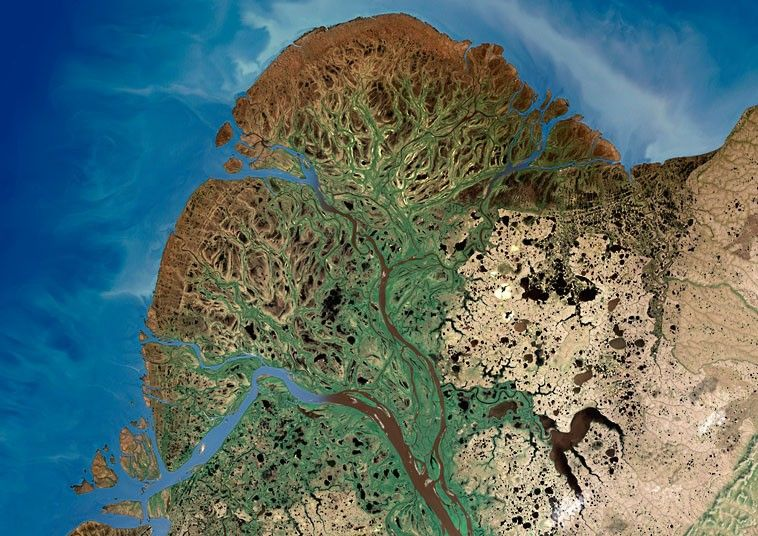 Patterns From Space Beautiful Satellite Images Of River Deltas - Rivers around the world