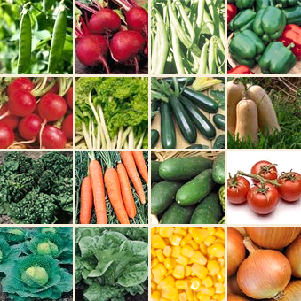 Genial Rare+Veg+Seeds+for+Sale | Colombia Survival Vegetable Seeds For Sale