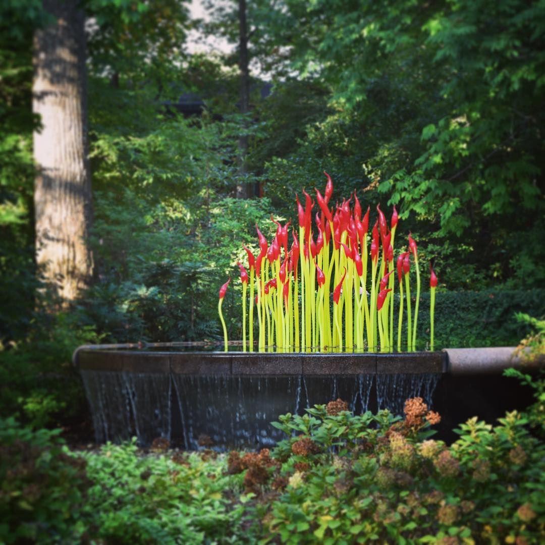 Atlanta Botanical Garden Skyline Gardens: The Chihuly Exhibit At The Atlanta Botanical Gardens