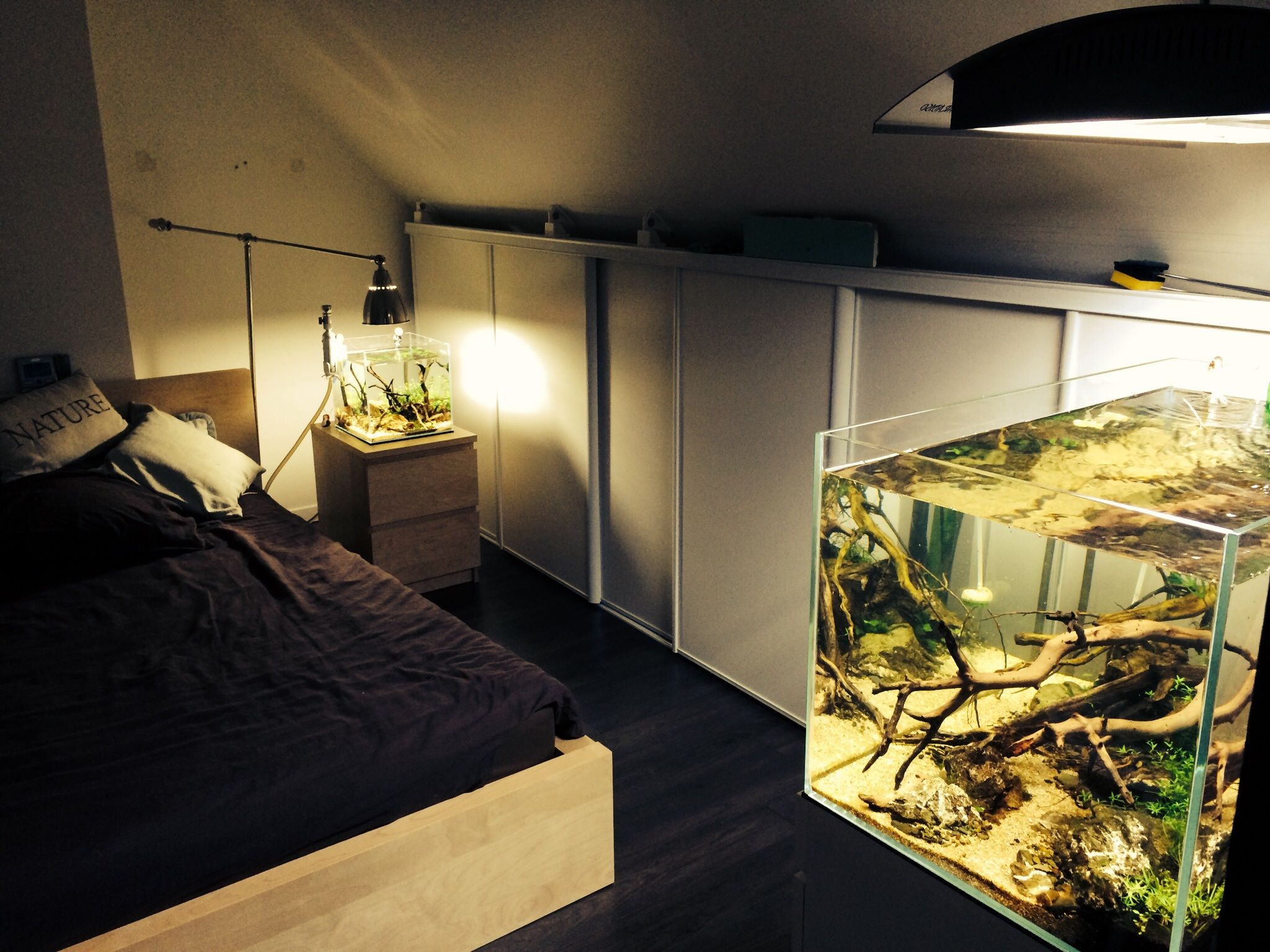Emma 39 s bedroom aquascaping aquarium fish room for Bedroom fish tank