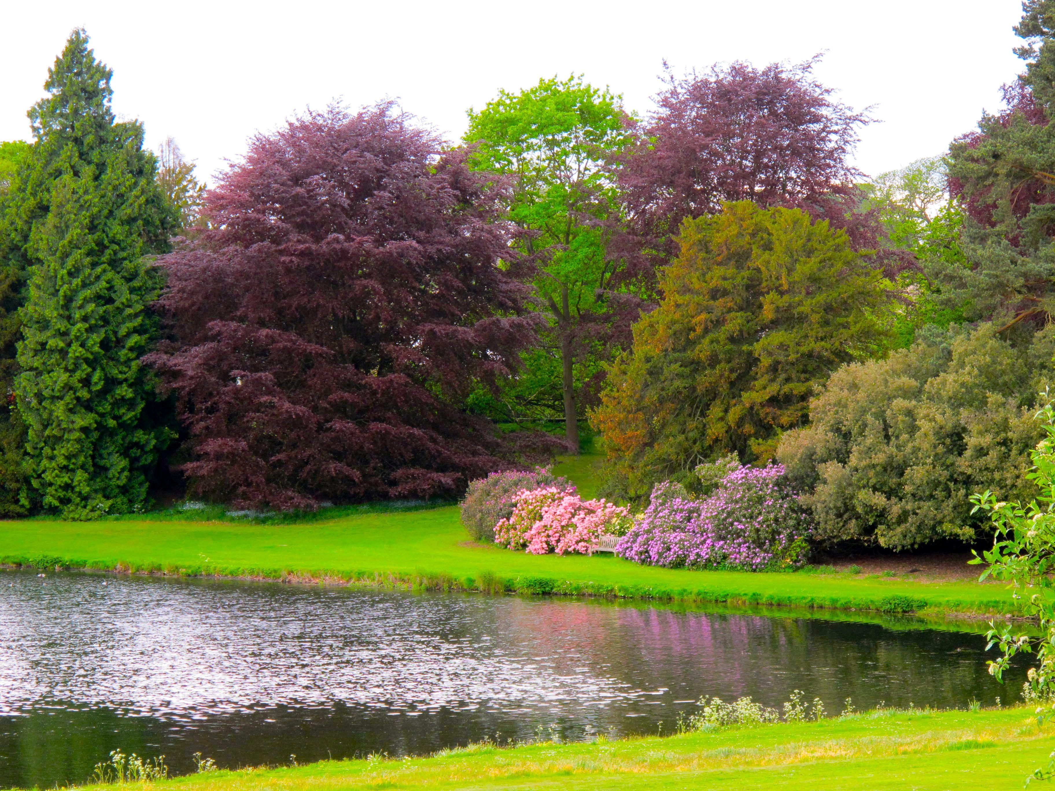 Colorful nature #beautifulnature #peaceful #meditate #lifechirocenter