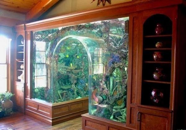 Unusual Built In Aquariums Adding Beautiful Green Ideas To Home Decorating Amazing Aquariums Aquarium Design Home Aquarium