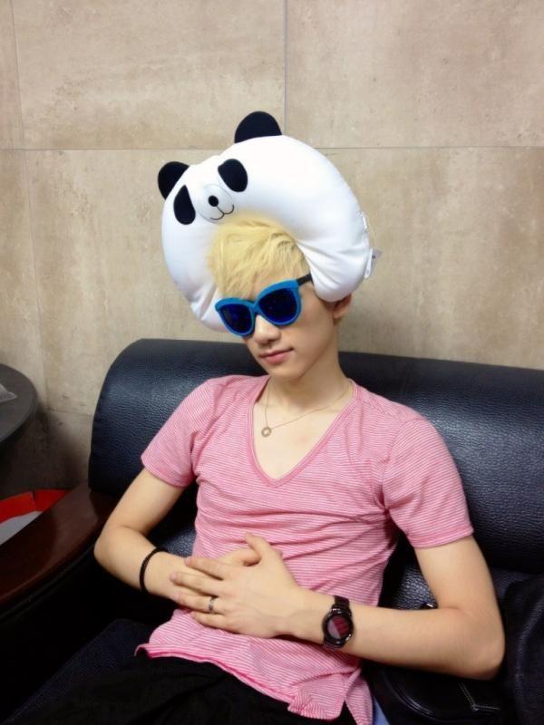 Awwww wat a cute panda! Oh the one his head is cute to