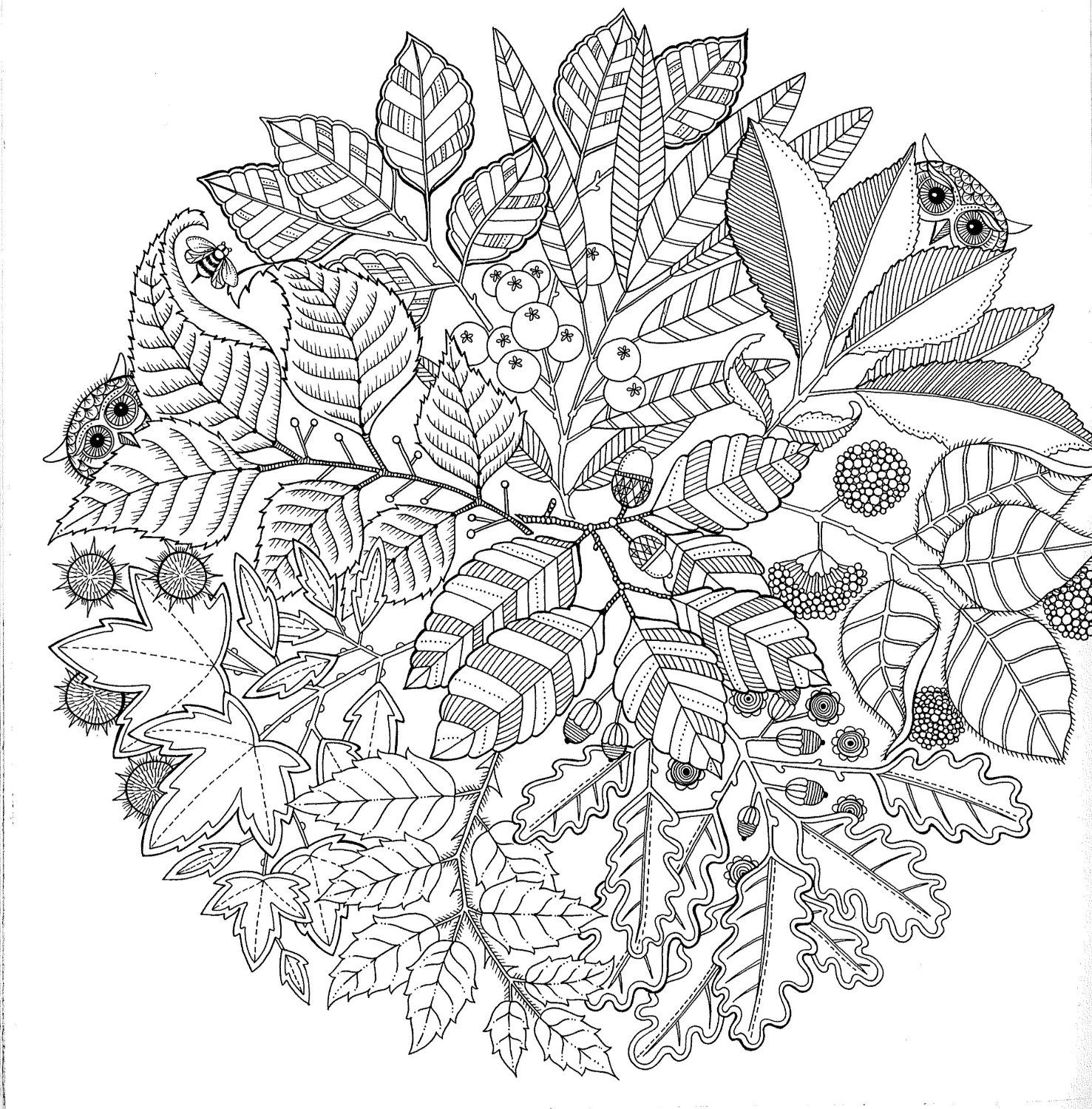 Coloriage Anti Stress Automne.Secret Garden French Colouring Book To Alleviate Stress