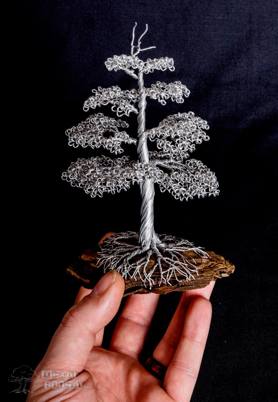 Chokkan Formal Upright Tree On Bark Base Metal Bonsai Wire Wiring Time Sculptures