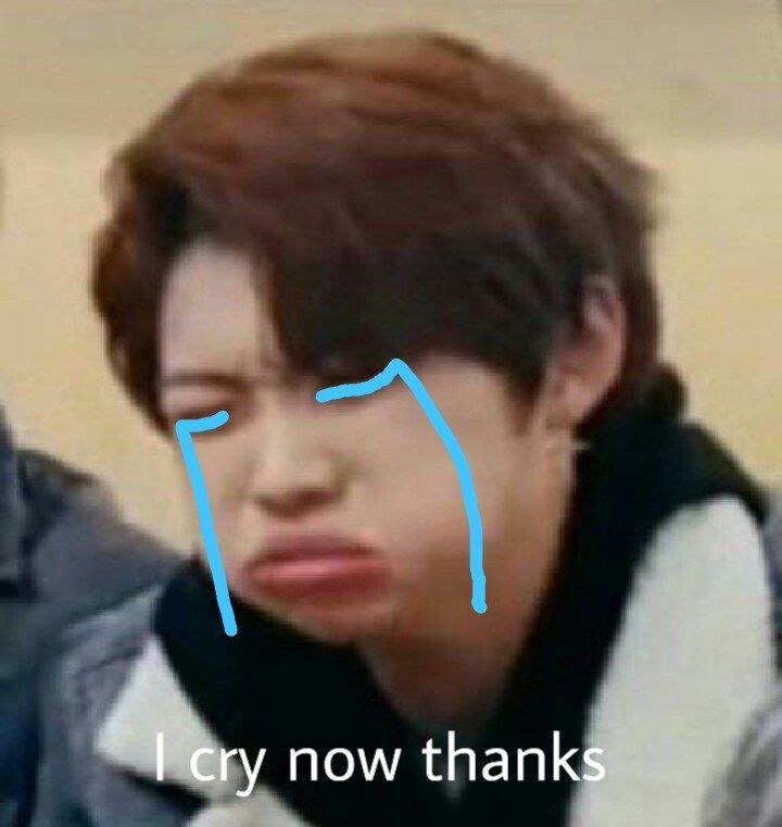 Sk Memes Shared Folder Stray Kids Amino Crying Meme Funny Kpop Memes Kid Memes