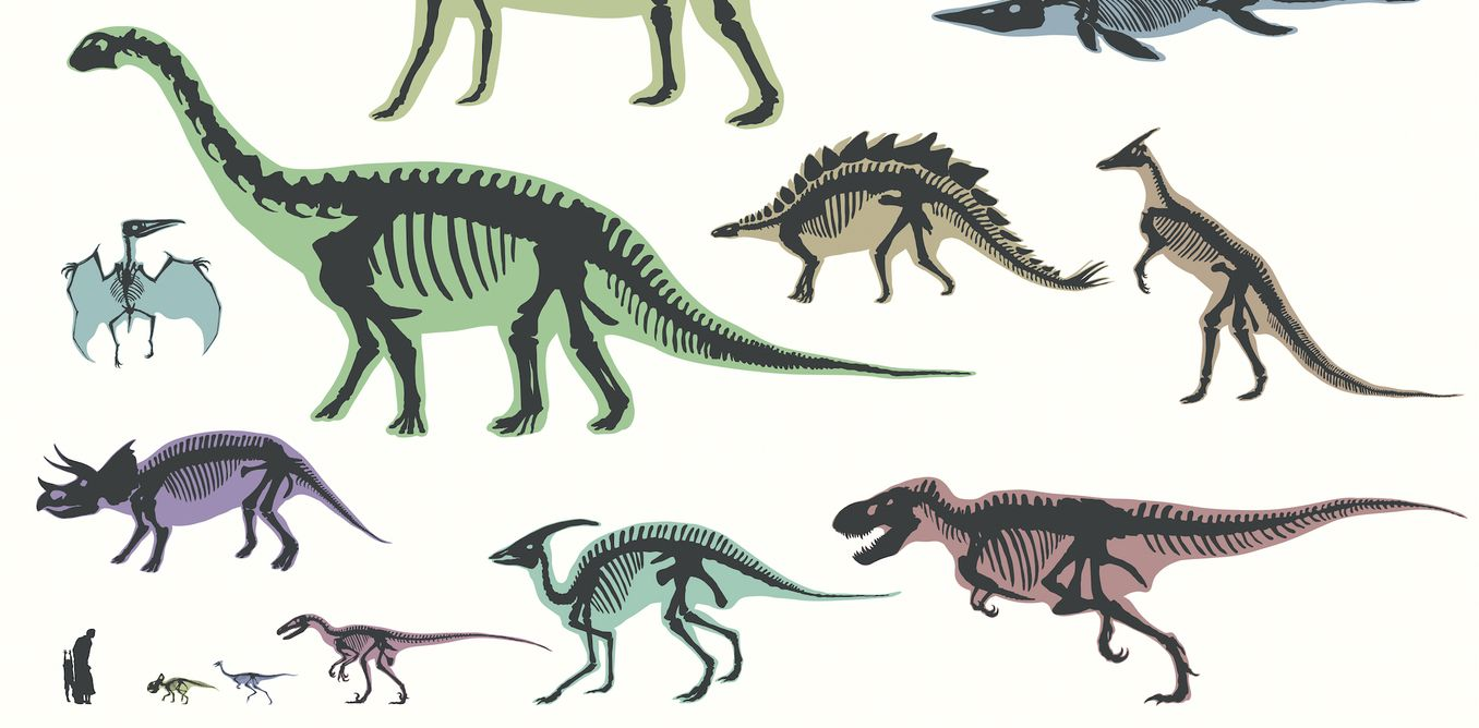 We might have to completely redraw the dinosaur family tree - https://www.deviantworld.com/science-technology/might-completely-redraw-dinosaur-family-tree/