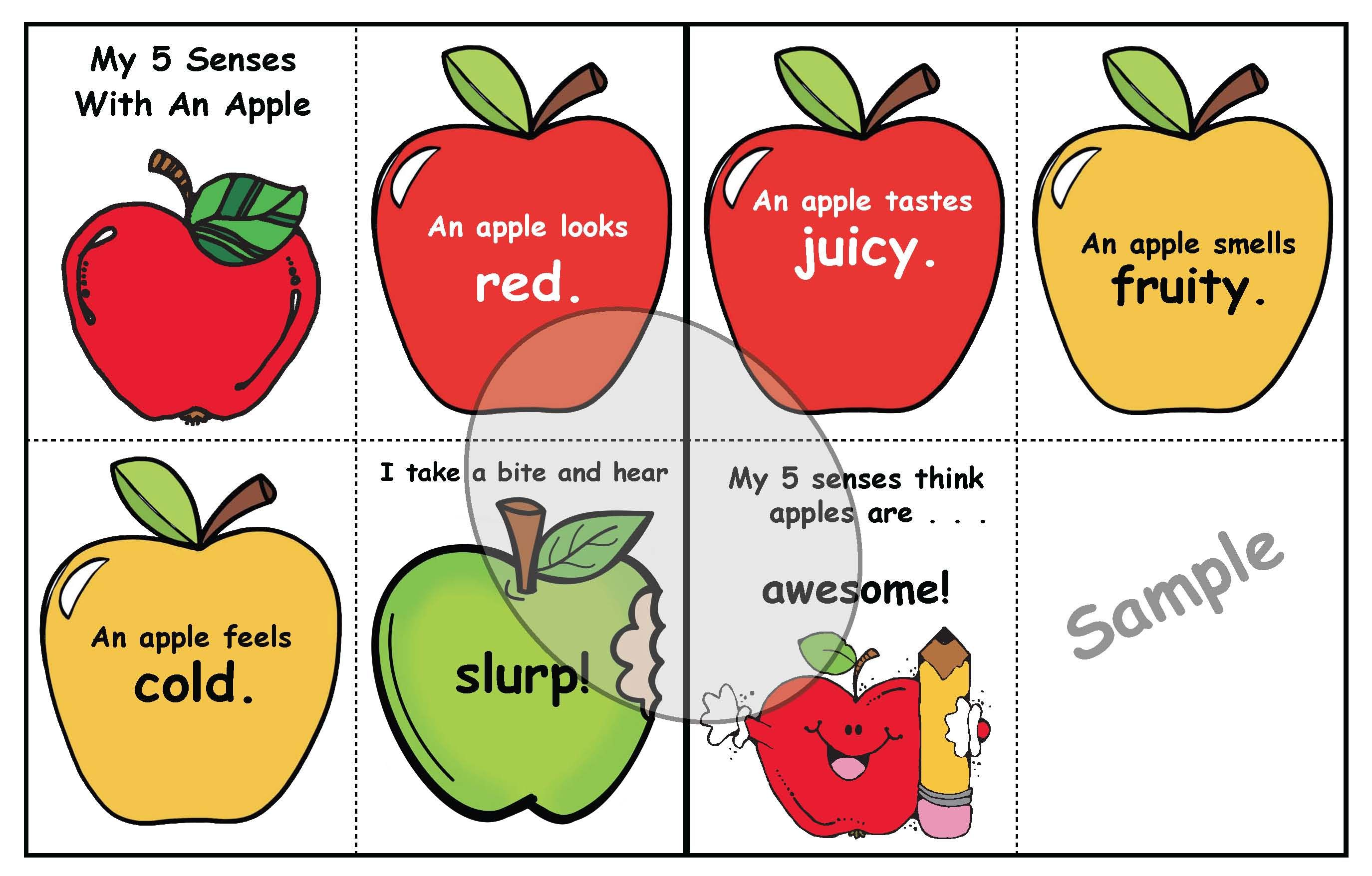 Studying The 5 Senses With Apples