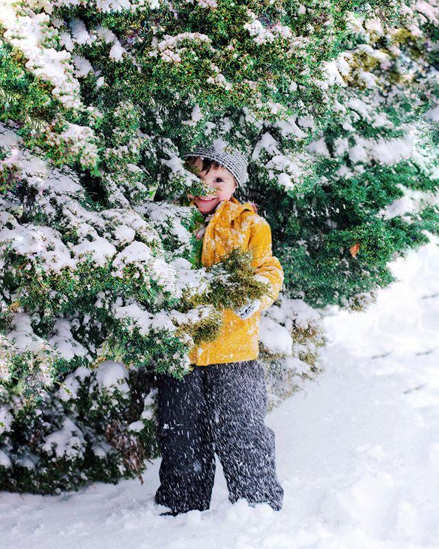 How Likely Snow Christmas Okc 2020 Elizabeth Santelmann📍OKC (@sunshineinmynest) • Instagram photos