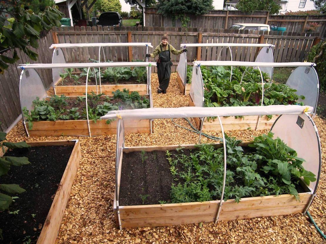 Exceptional Pinterest Vegetable Garden Ideas Part - 13: Vegetable Gardening For Beginners