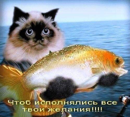 Мишки Тедди на ногтях: фото и видео милого маникюра 45