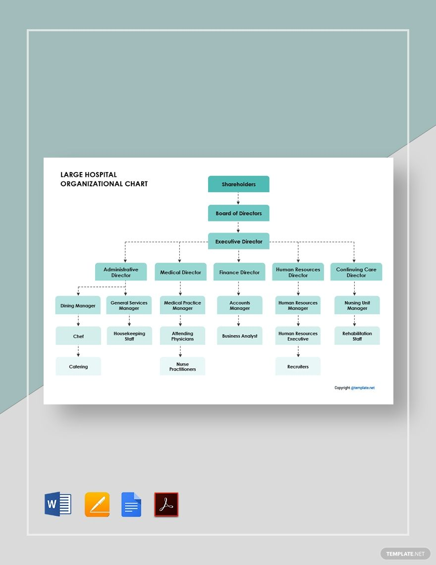 Large Hospital Organizational Chart Template [Free PDF]   Google ...