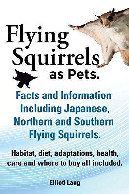 What Do Baby Squirrels Eat? - Fashion & Lifestyle Magazine ...   Baby Squirrel Diet