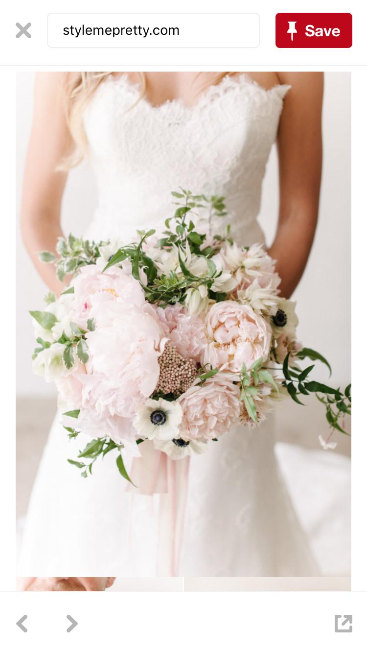 Pin by marleigh schenck on flowers pinterest flowers