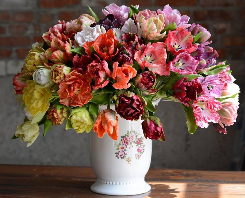 поздравления прозе цветок олеся фото баранины дома казане