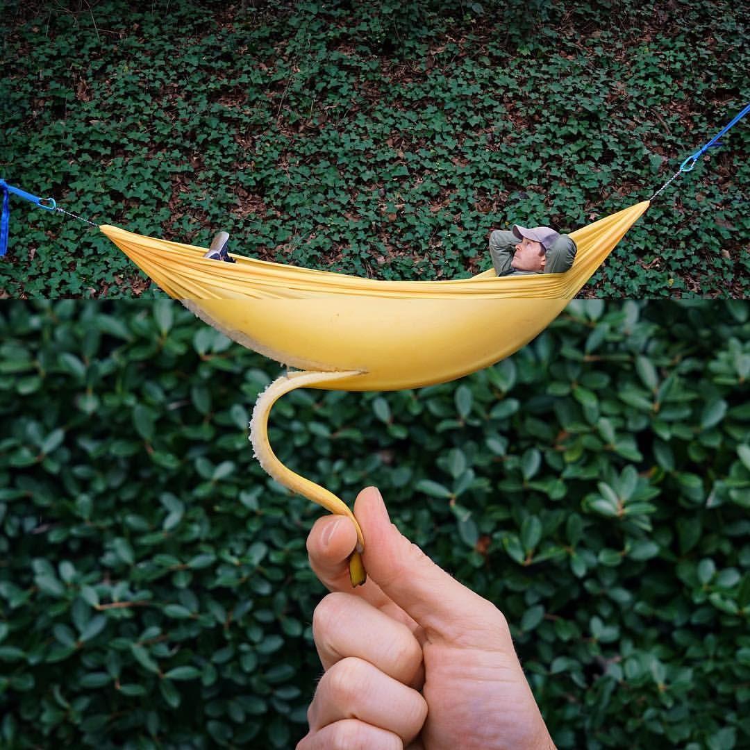 Hammock banana from its inception as a crude ucbanana hammock