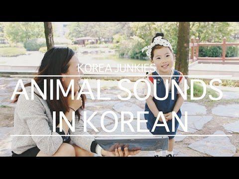 Super Cute Yebin teaching Animal sounds in Korean