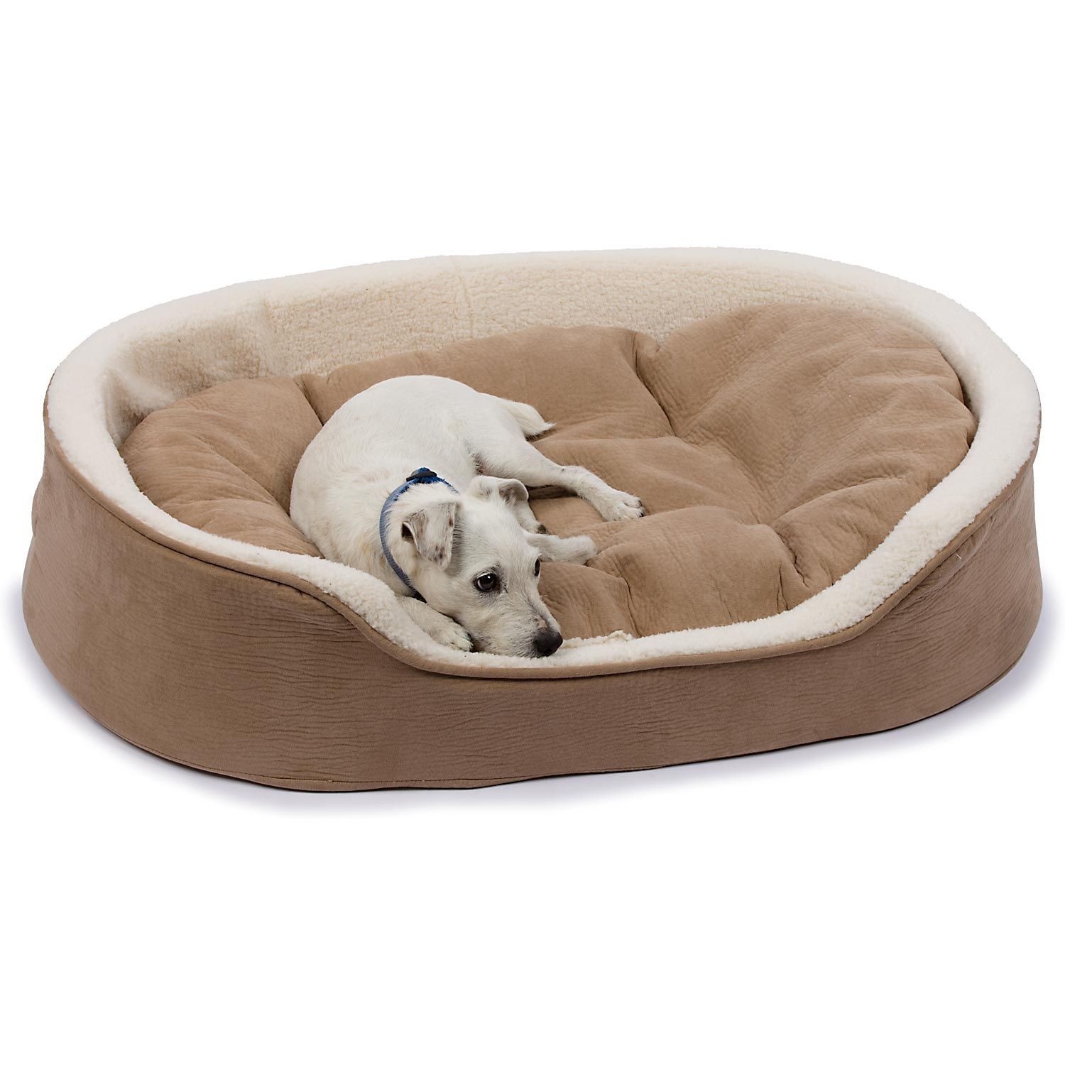 Petco Oval Tan and Cream Lounger Dog Bed. This bed is so