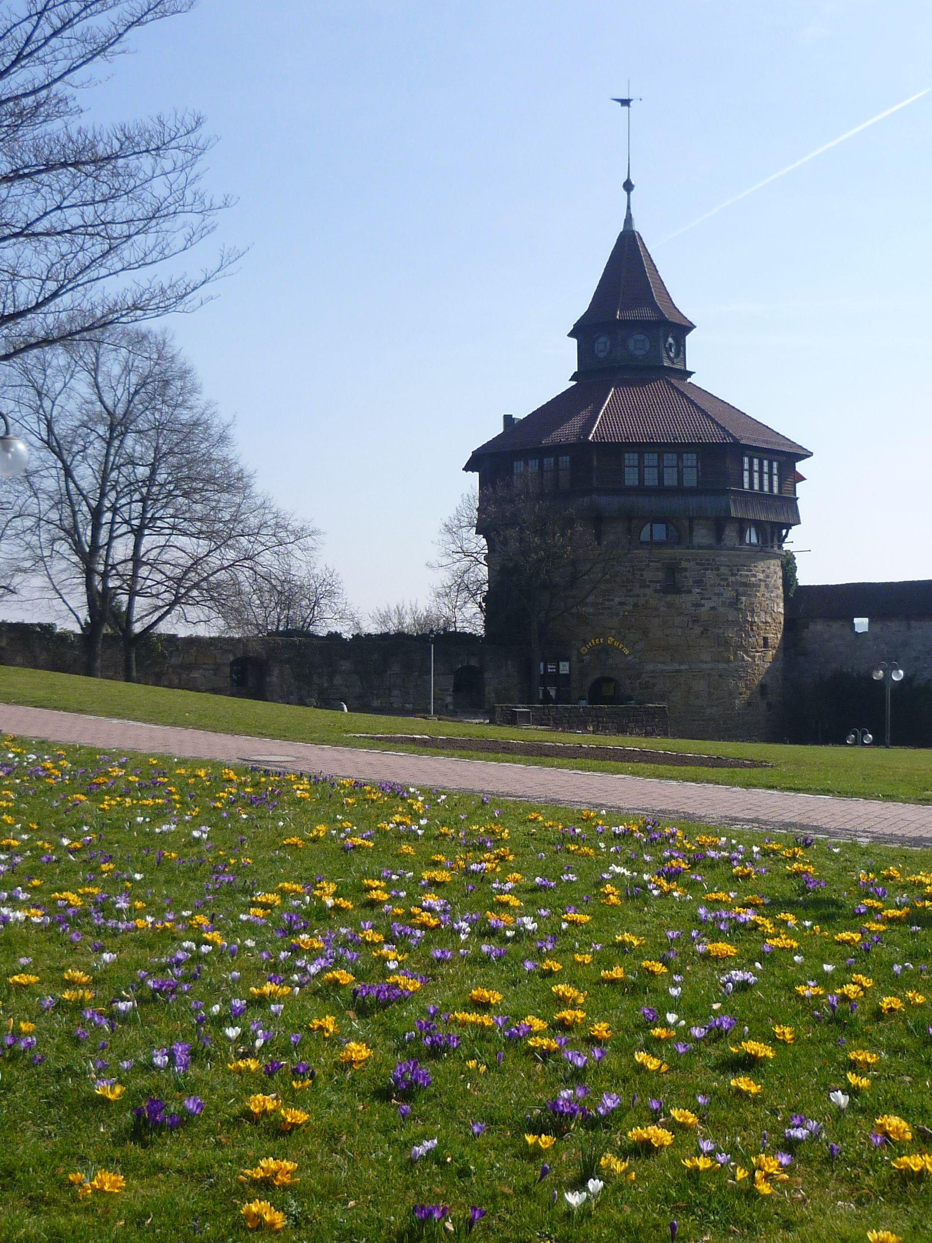 Dicker Turm Burg Esslingen Esslingen Deutschland Burg Und Stadt